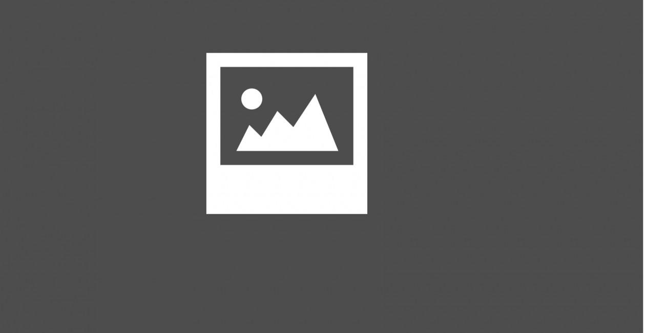 Pietra Naturale Canova
