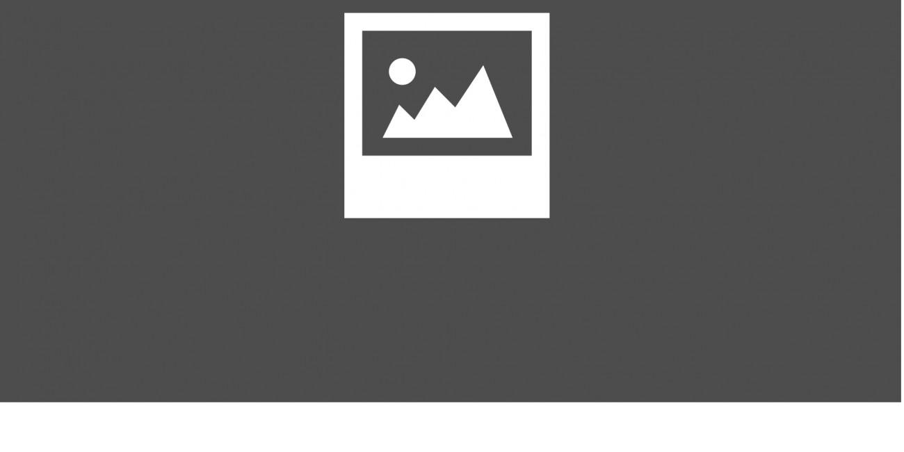 Kieselstein Piave mittlere Körnung